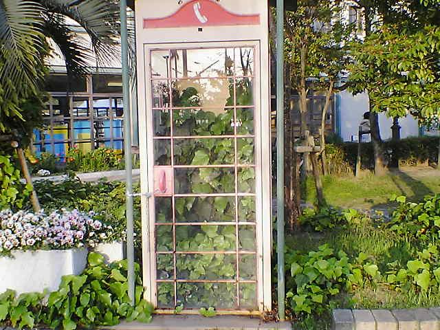 電話ボックス?